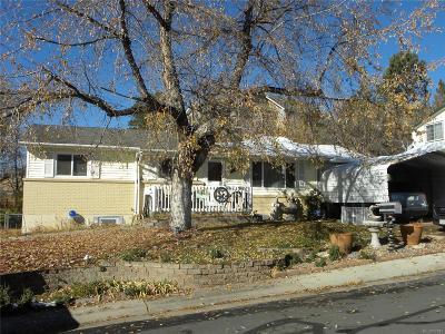 Castle Rock Single Family Home Active: 181 Hillside Drive