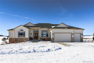 Castle Rock CO Single Family Home Active: $989,000