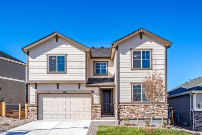 Castle Rock Single Family Home Active: 3895 White Rose Loop