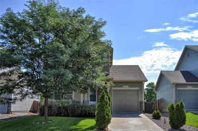 Frederick Single Family Home Under Contract: 6137 Lincoln Street