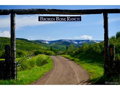 Oak Creek, Phippsburg, Yampa, Toponas Residential Lots & Land Active: 22900 County Road 13