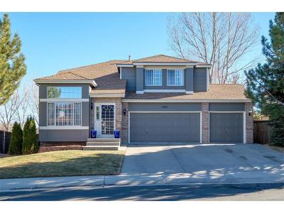 Parker Single Family Home Under Contract: 16501 Bluebonnet Drive