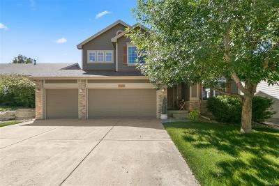 Longmont Single Family Home Active: 5918 Summerset Avenue