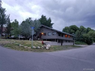 Steamboat Springs CO Single Family Home Active: $1,045,000