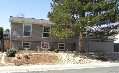 Single Family Home Under Contract: 4375 South Braun Way