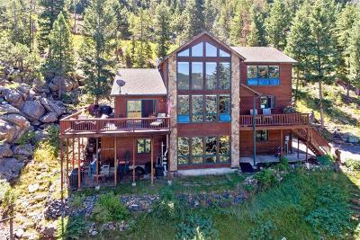 Evergreen Single Family Home Active: 29451 Falcon Ridge Drive