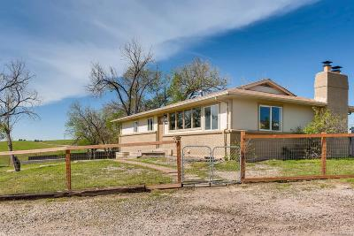 Elizabeth Single Family Home Under Contract: 38636 County Road 5