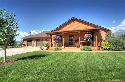 Salida Single Family Home Active: 12001 East County Road 190