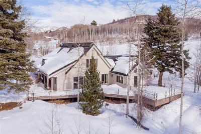 Steamboat Springs Single Family Home Active: 41590 County Road 38a