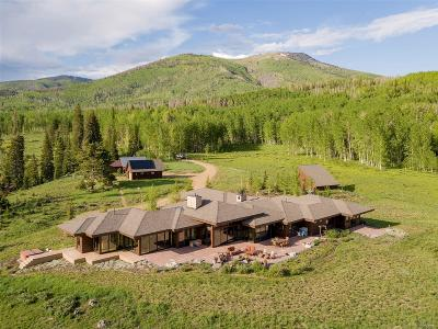 Routt County Single Family Home Active: 60775 County Road 209