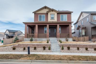 Meadows, The Meadows Single Family Home Under Contract: 4297 Fossil Way