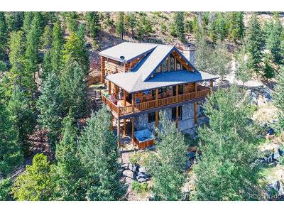 Evergreen Single Family Home Active: 599 Sawmill Creek Road
