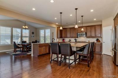 Castle Rock Single Family Home Active: 1139 Raindrop Way