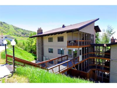 Steamboat Springs Condo/Townhouse Active: 2215 Storm Meadows Drive #510
