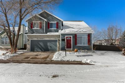 Highlands Ranch Single Family Home Under Contract: 1156 Cobblestone Drive