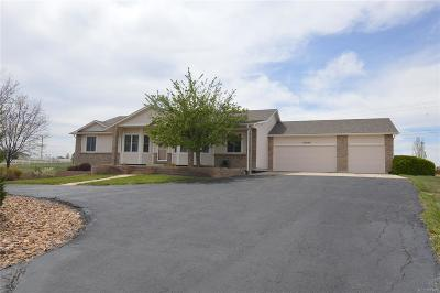 Brighton Single Family Home Active: 10520 East 153rd Drive