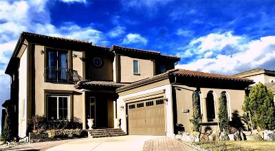Lone Tree Single Family Home Under Contract: 9745 Cantabria Pt