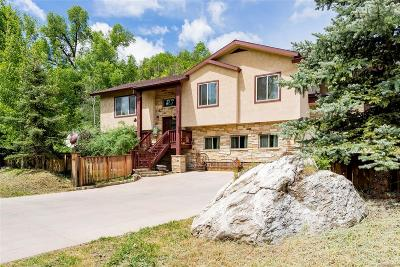 Steamboat Springs Single Family Home Active: 209 River Road