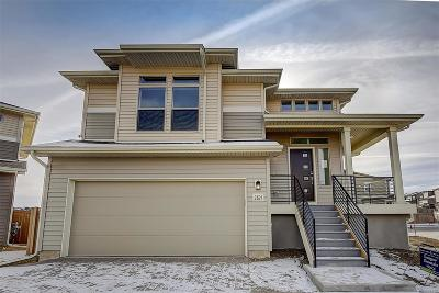Castle Rock Single Family Home Active: 2821 Merry Rest Way