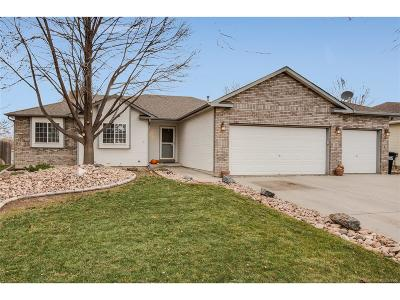 Mead Single Family Home Under Contract: 2766 Serena Drive