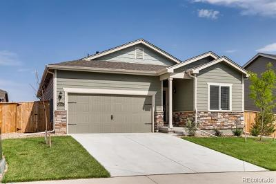 Berthoud Single Family Home Active: 2848 Urban Place