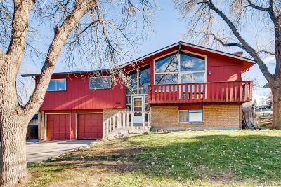 Golden Single Family Home Under Contract: 450 Ellis Way