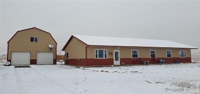 Saguache Single Family Home Active: 23900 County Road 47.5
