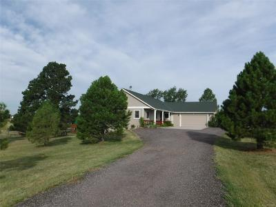 Elbert County Single Family Home Active: 34817 Mustang Trail