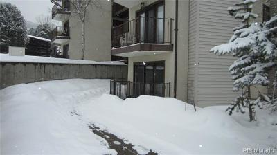 Routt County Condo/Townhouse Active: 2035 Walton Creek Road #2