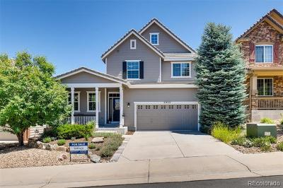 Castle Rock Single Family Home Active: 2935 Black Canyon Way