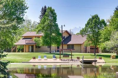 Longmont Single Family Home Active: 11700 Crane Hollow Road
