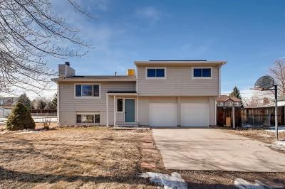 Littleton Single Family Home Under Contract: 8631 South Ammons Street