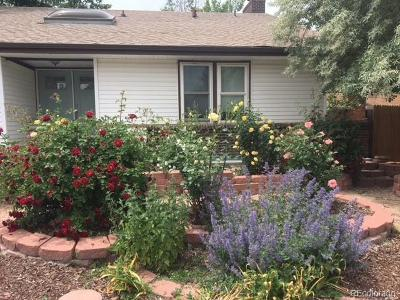 Broomfield County Single Family Home Active: 3 Evergreen Place