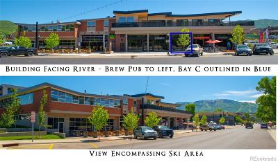 Steamboat Springs Income Active: 910 Yampa Street