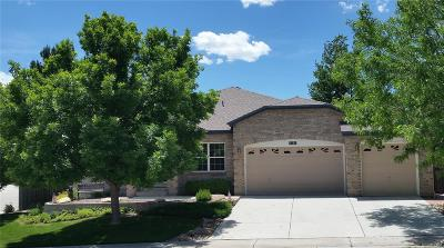 Castle Pines Single Family Home Under Contract: 8187 Cottongrass Court