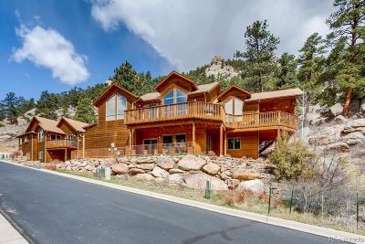 Estes Park Single Family Home Active: 1411 Sierra Sage Lane
