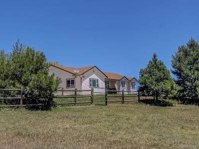Elbert County Single Family Home Under Contract: 651 Ponderosa Lane