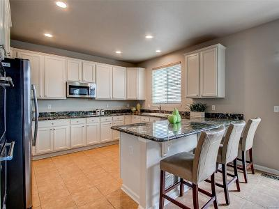 Highlands Ranch Single Family Home Active: 10724 Wynspire Road