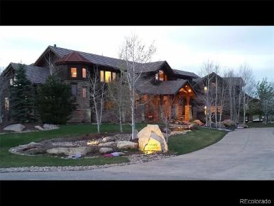 Mead Single Family Home Active: 17482 Foxtail Court