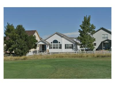 Fort Lupton Single Family Home Active: 371 Clubhouse Drive