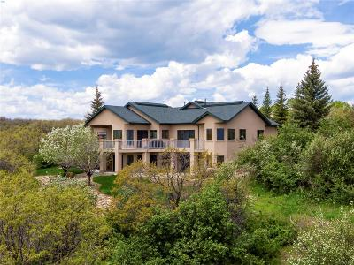 Steamboat Springs CO Single Family Home Active: $1,149,000
