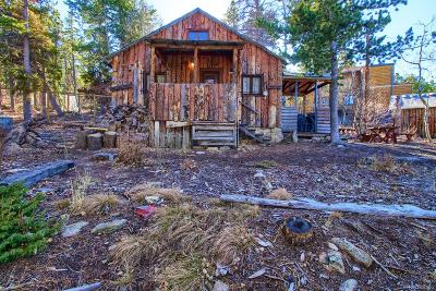 Golden Single Family Home Under Contract: 33440 Coal Creek Canyon Drive