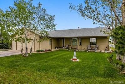 Elbert County Single Family Home Active: 3217 Windstream Lane