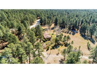Elbert County Single Family Home Active: 36725 Forest Trail