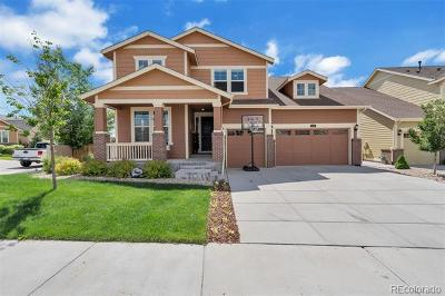 Castle Rock Single Family Home Active: 2751 Whitewing Way