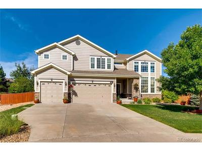 Castle Rock Single Family Home Under Contract: 6965 Sapphire Pointe Boulevard