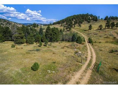 Jefferson County Residential Lots & Land Active: 21581 Falcon Wing Road