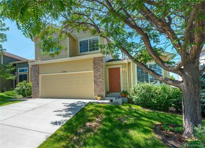 Parker Single Family Home Active: 11241 Rodeo Circle