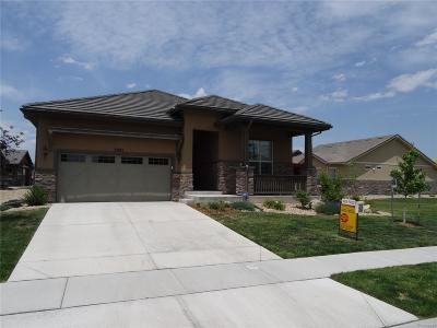 Single Family Home Under Contract: 3901 Wild Horse Drive
