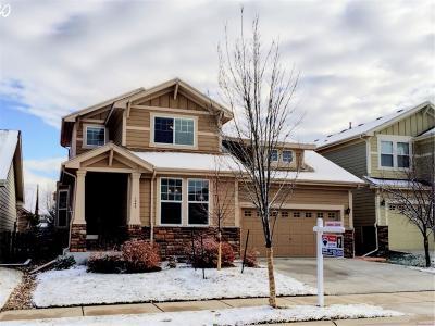 Erie Single Family Home Active: 1045 Koss Street